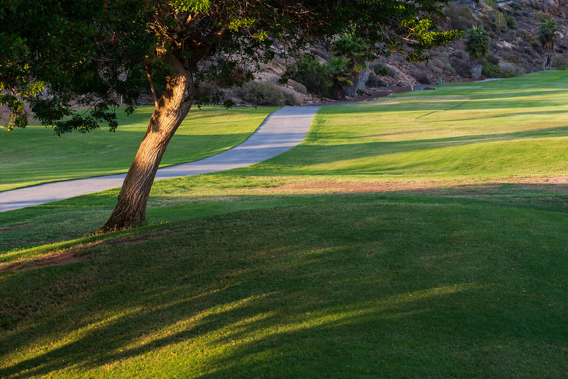 Golf Adeje_20191024_9860.jpg