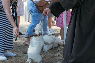 09-30-17 Blessing of the Animals Group 1