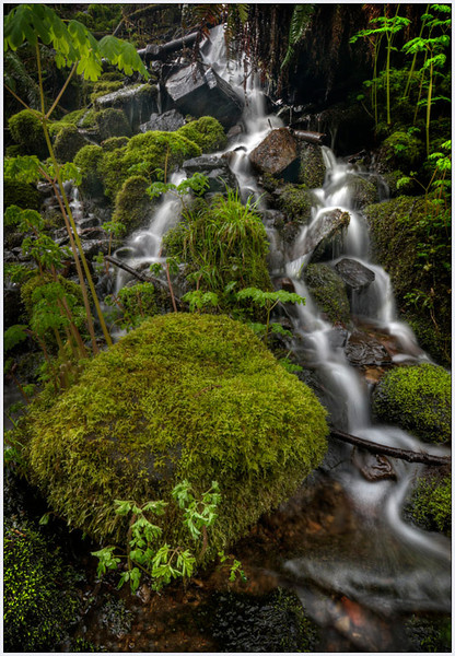 Oregon Cascades, Oregon, landscape, fine art.jpg