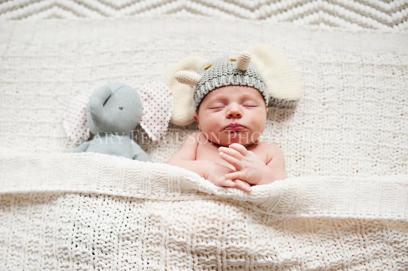 Hillary_Ferguson_Photography_Carlynn_Newborn031.jpg