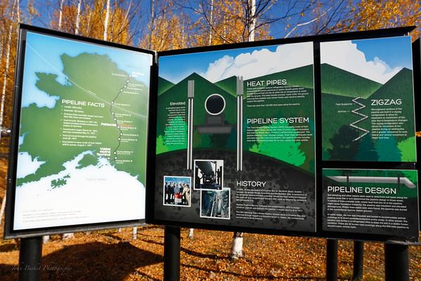 Artic Circle Northern Lights