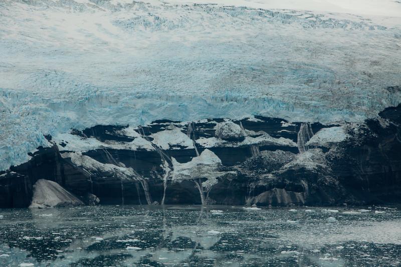 Alaska Icy Bay-3891.jpg