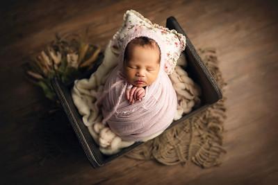 Beatrice C Newborn