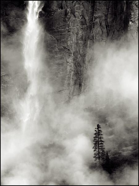Yosemite_20081104_0553BW.jpg