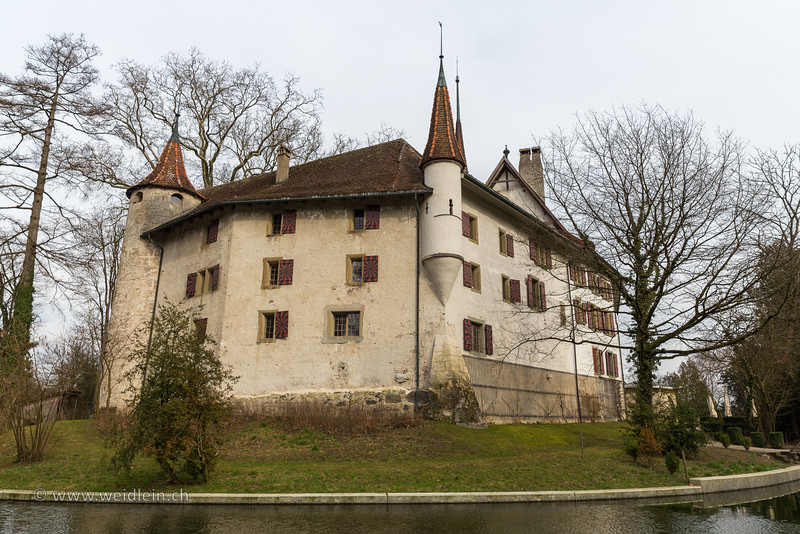 Castle-3.jpg