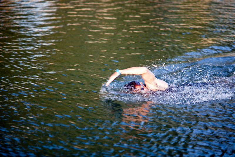 Man swimming in a lagoon, Conleau island, town of Vannes, departament of Morbihan, region of Brittany, France