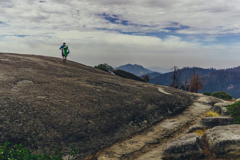 Rui in Sequoia-07021.jpg