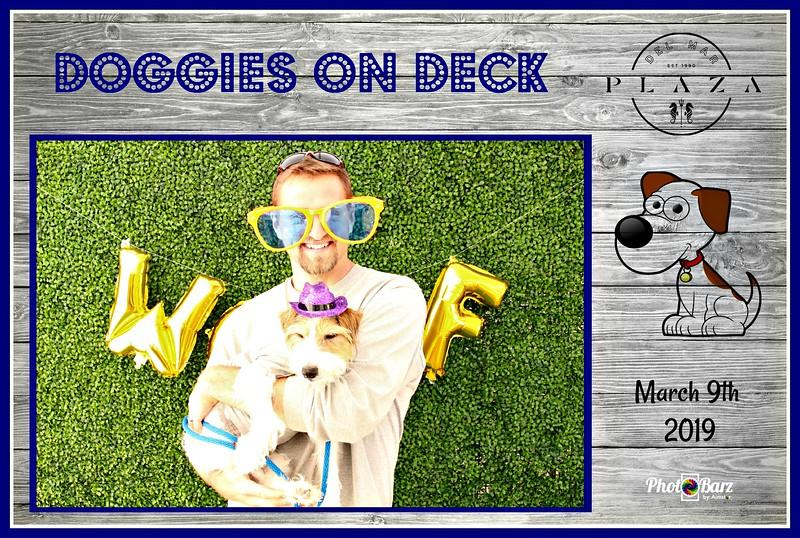 Doggys on Deck62.jpg