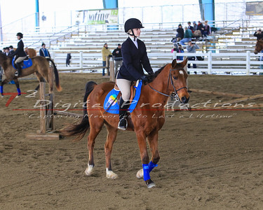 22-Class 9 Individual - Junior Varsity Beginner Equitation on the flat WTC