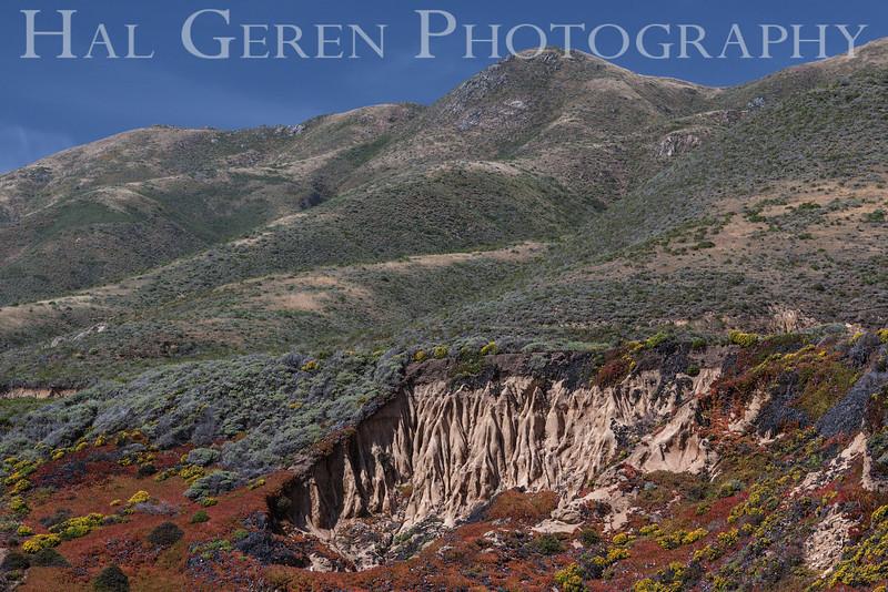 Garrapata Creek Headlands Big Sur, California 1206BS-E2