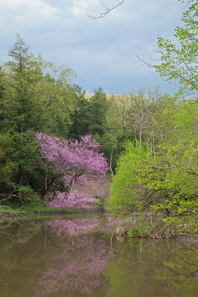 Spring13-0496.jpg