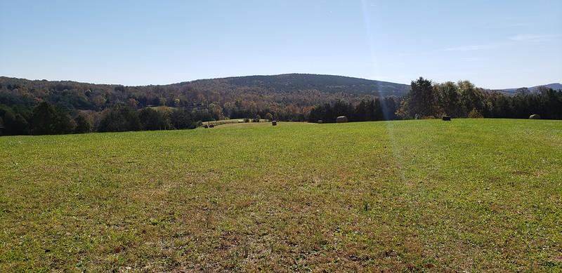 Lush, fenced pastures