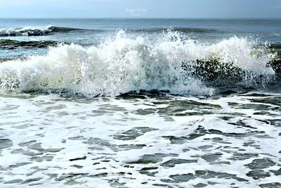 Beauty of the Beach!