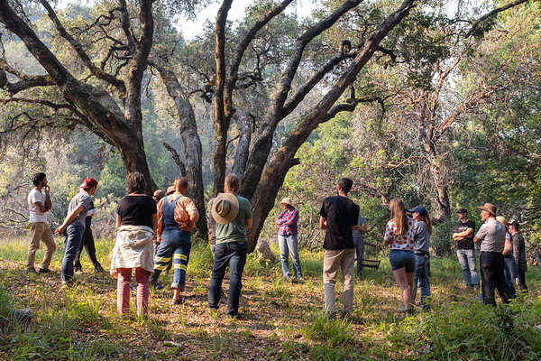Santa Cruz Permaculture Fall 2018 Workshop