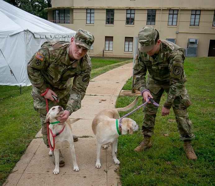 Thrive Donates to Animal Rescue