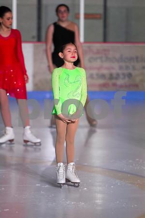 Ice Show 2016