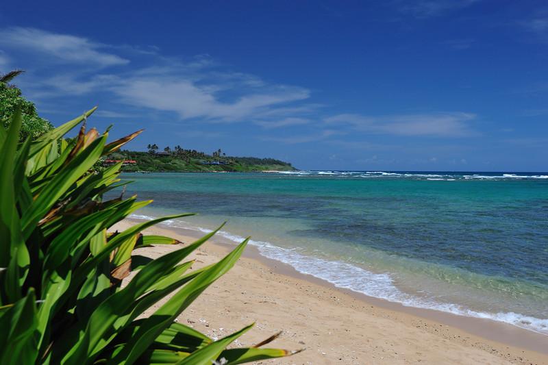 Kauai_023_5.jpg