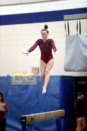 High School Gymnastics 2018-19