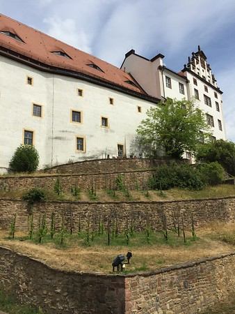 28th June - Escape to Colditz