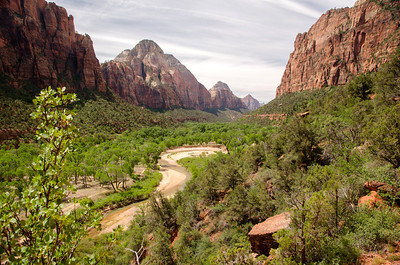 Grotto Trail/Zion Nat'l Park/UT - May, 2015