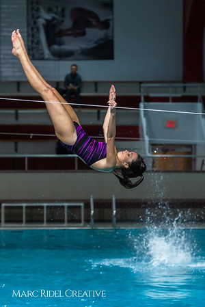Broughton diving. January 14, 2019. 750_3064