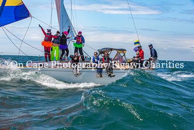 Figawi 2014 Race
