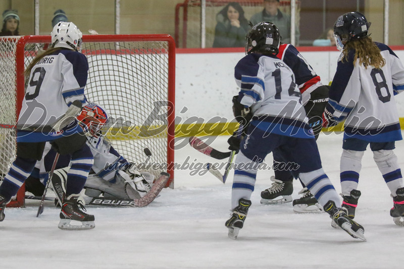 Gladwin Squirts Districts 020820 5218.jpg