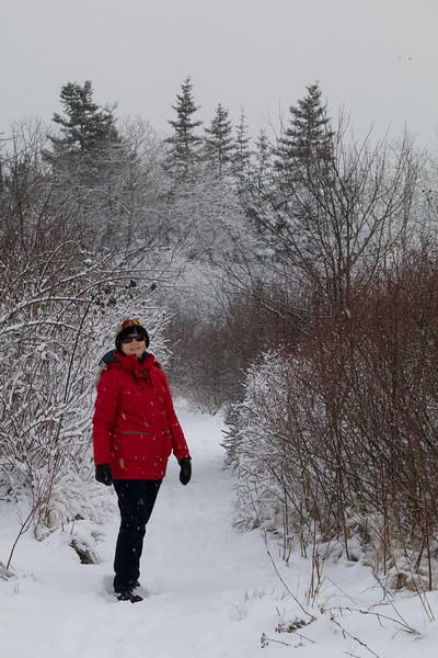 Winter Walk -Island View Salt Marsh