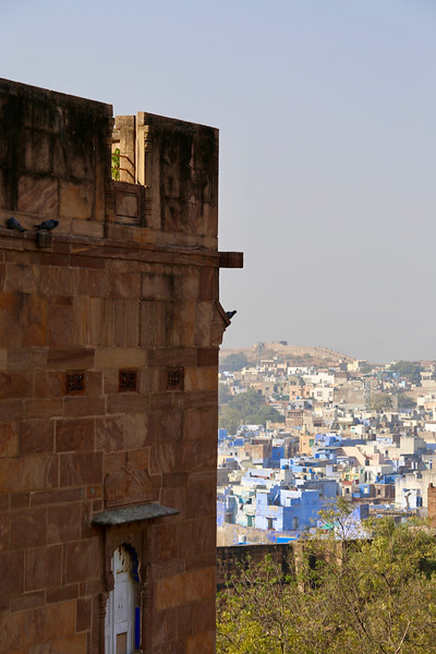 INDIA - 744.jpg