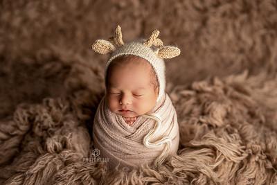 David • Newborn