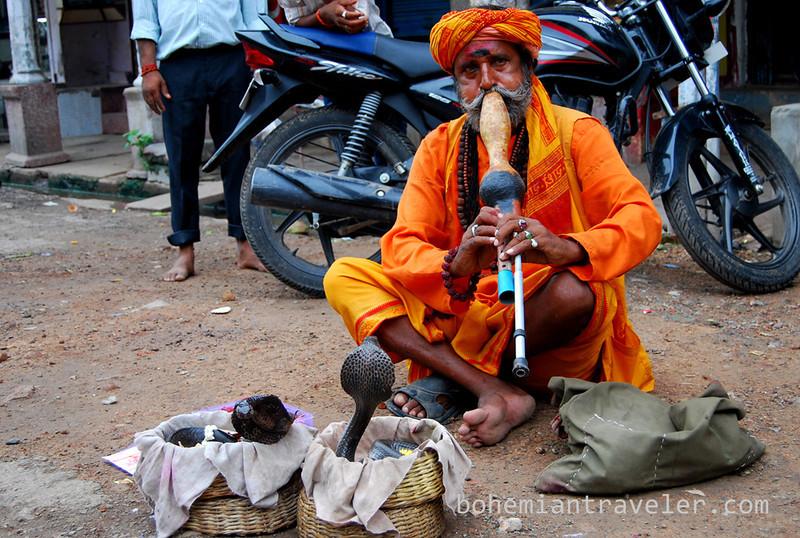 snake charmer in Varanasi.jpg