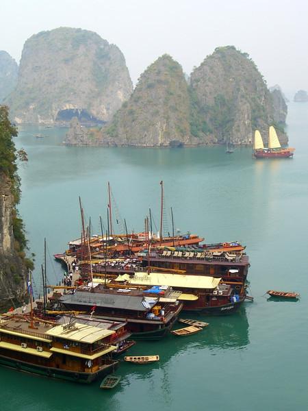 Boats at the Dock - Halong Bay, Vietnam