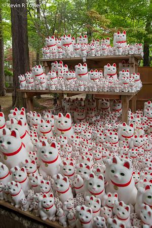 Day 7 - Cat Shrines