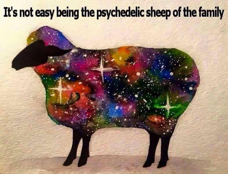 STOCK_SPiritual_PsychedelicSheep.jpg
