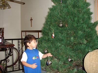 2005-11-28 Setting up the Christmas Tree