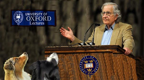 Chomsky.GaWy_650x360.jpg