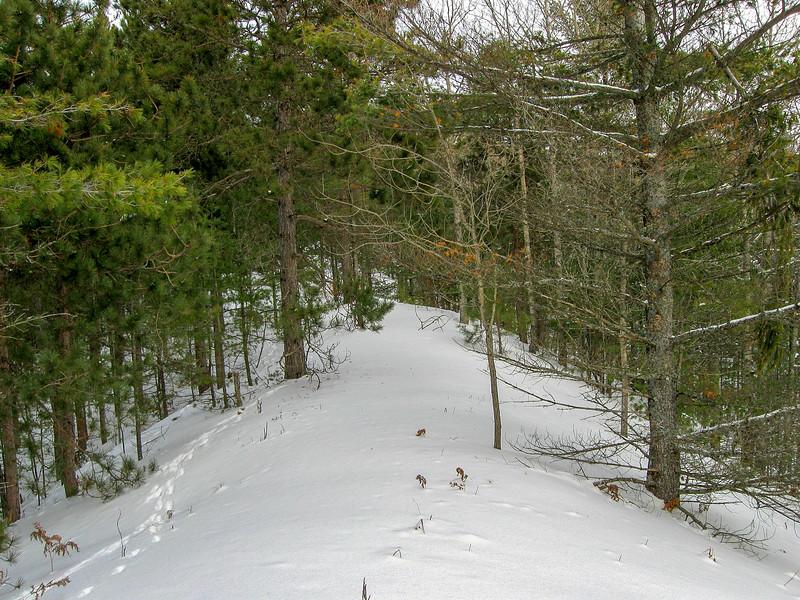Big Knob Pathway