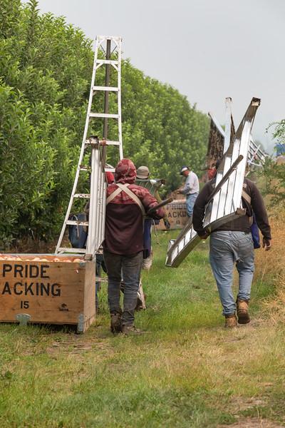 PridePacking-1012.jpg