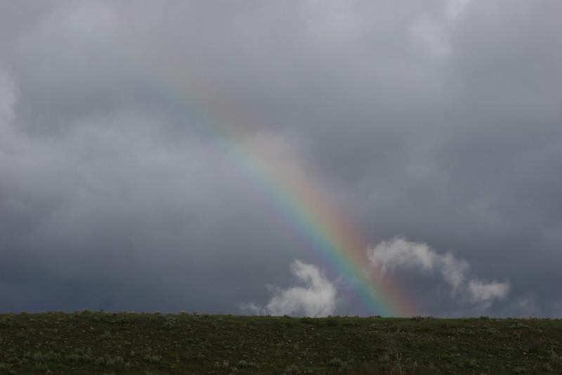 Rainbow - most often seen after a geyser erupts