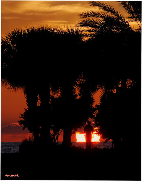Clearwater Fl. Sunset