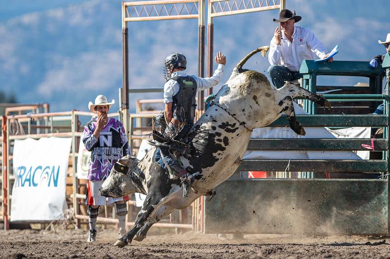 2019 Rodeo 5 (10 of 574).jpg