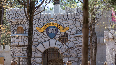Sherwood Forest Faire - 2015