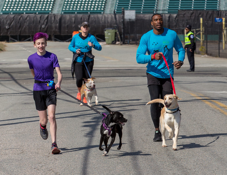 Richmond Spca Dog Jog 2018-643.jpg
