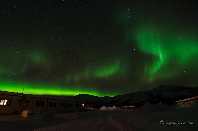 USA-Alaska-Coldfoot-Aurora-3366.jpg