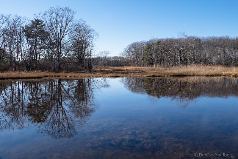 symmetry in reflections