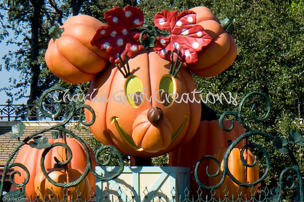 Disneyland 10-12-08