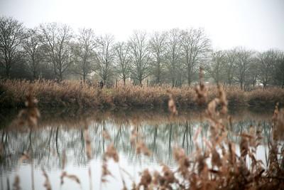 Domaine de Chambord