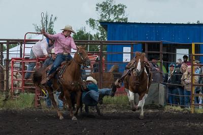 Steer Wrestling Saturday 2013