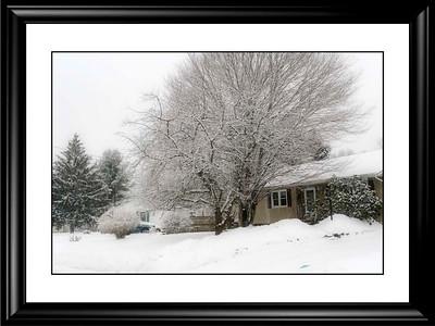 A Walk In A Snowstorm