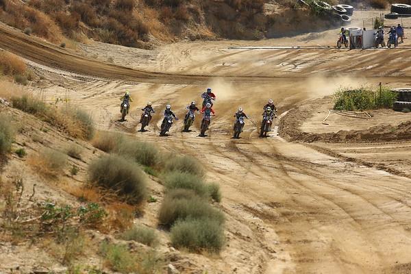 Race 2: +50 Exp/Int/Nov